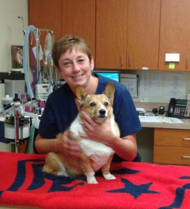 Colleen Dunn, LVT for Internal Medicine at Upstate Veterinary Specialties