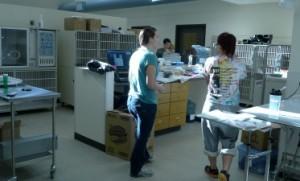 UVS specialty and emergency staff prepare